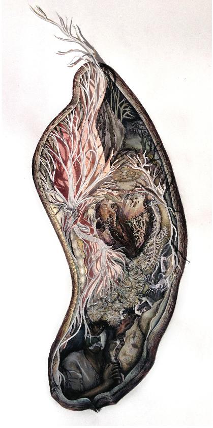 Kanitta Meechubot, illustration included on cover Granta 120 the Medicine issue, 2012