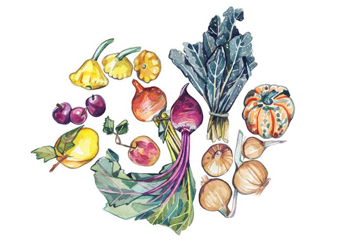 Holly Exley_Fall-Seasonal-Ingredients_700