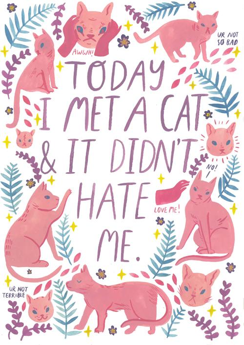 met-a-cat-web