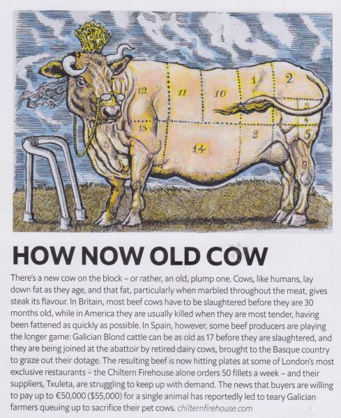 1843 Magazine / How Now Old Cow