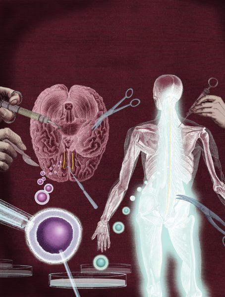 Gene Therapies / The Sunday Telegraph