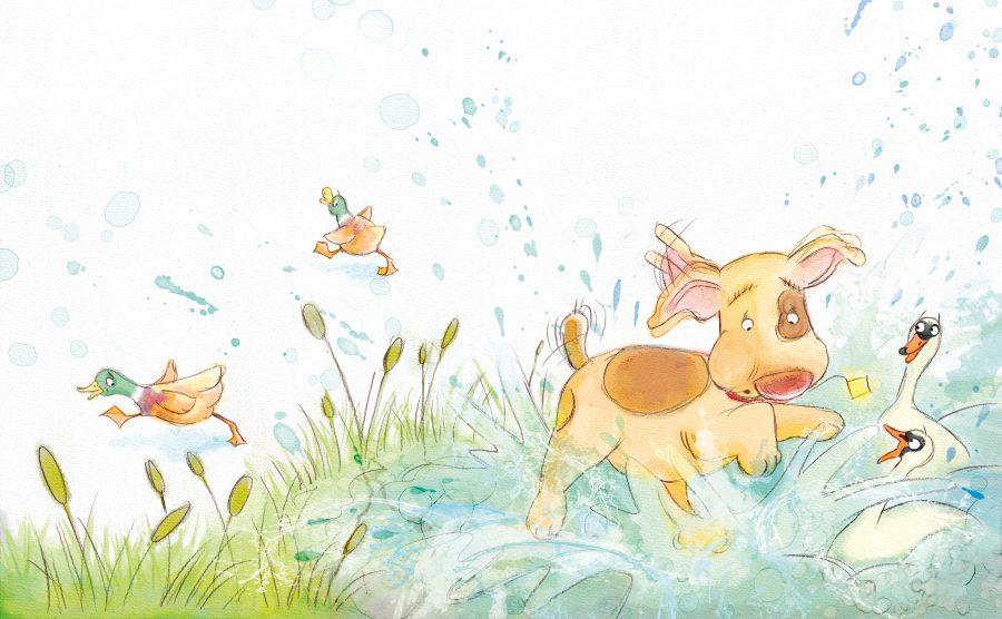 Cute Dog and Ducks