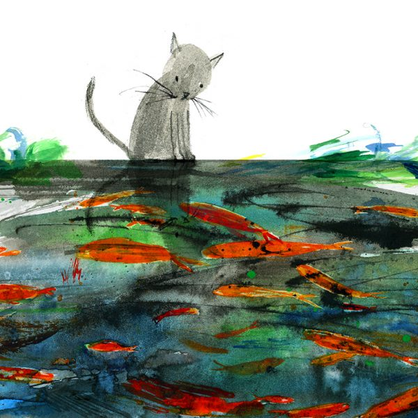 cat and fish pond