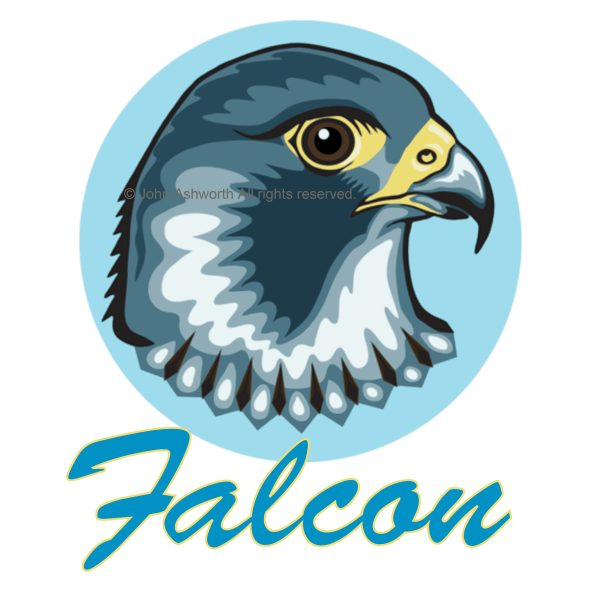 Falcon Bird Nature Environment Symbol Logo Icon Brand ©2018 John Ashworth