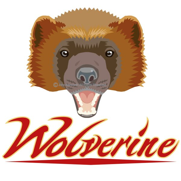 Wolverine ©2020 John Ashworth Animal / Nature Brand/ Logo / Icon / Symbol Character Personality Positive Bold Graphic Colourful. Customised Lettering  Contemporary & Retro Advertising Education & Fashion.