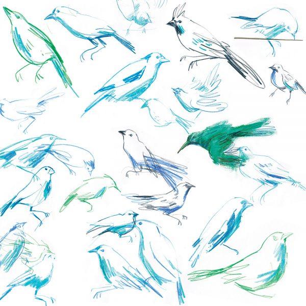 Bird sketches in blue