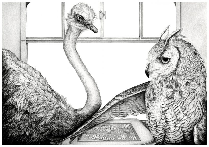 The Ostrich and The Owl