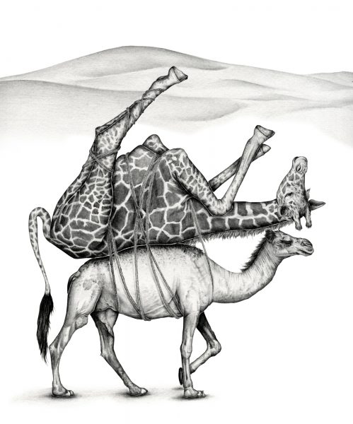 King George's Giraffe