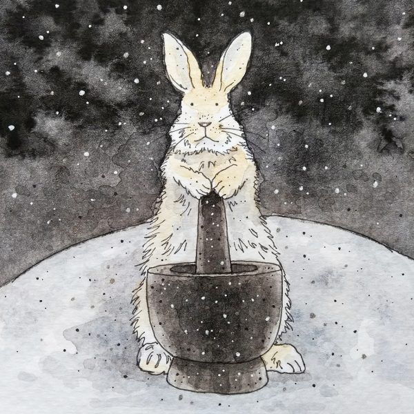 Moon Rabbit Folktale