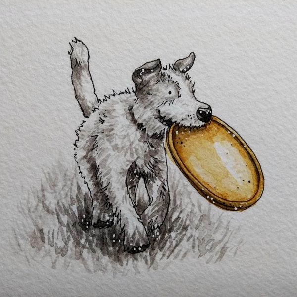 Victoria-Ellis-Dog-with-Frisbee