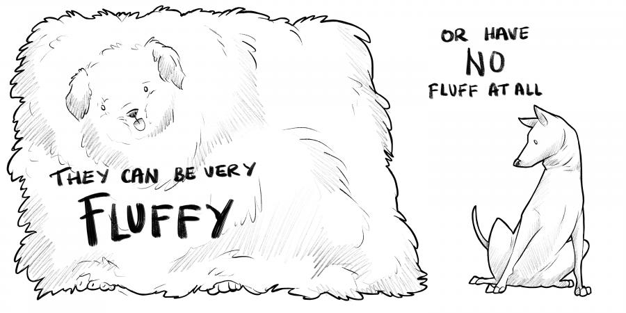 Fluffy Dog Cube