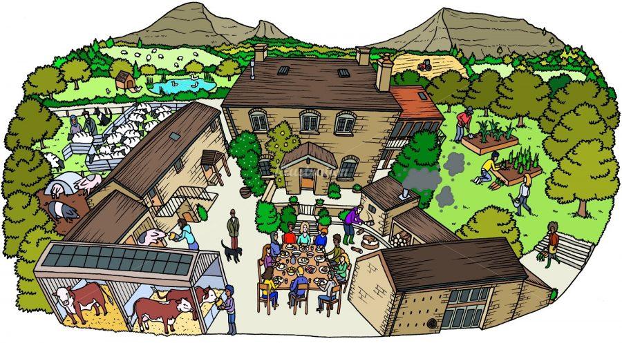countryside-illustration