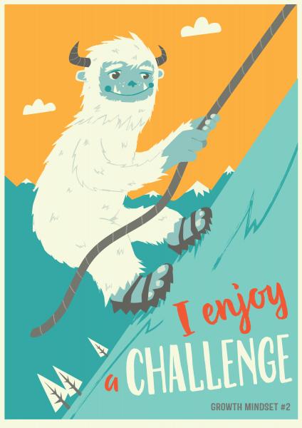 I Enjoy a Challenge