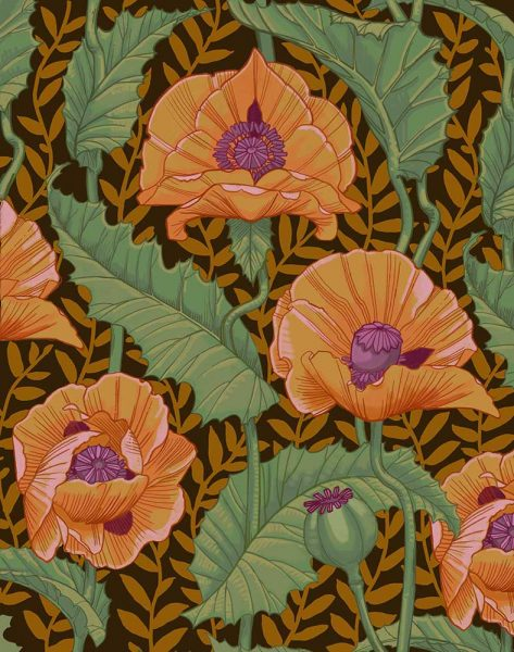 Poppies Single stem colors web