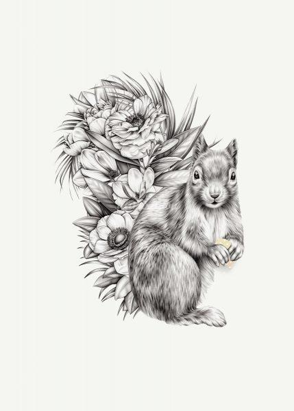 squirrel-pencil-drawing