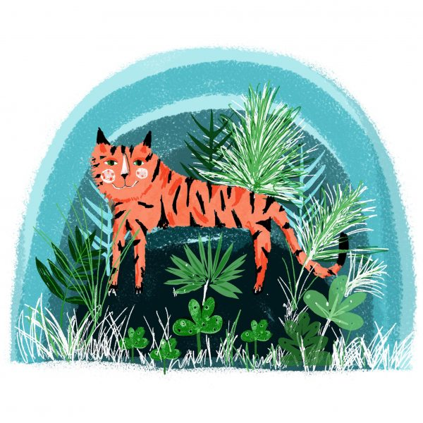T is for tiger Susse Linton