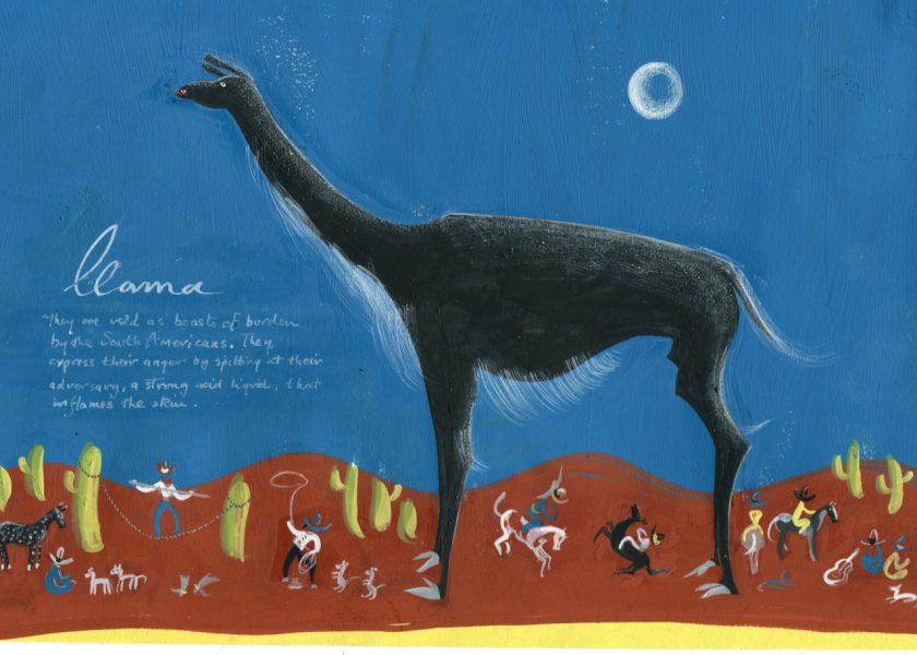 Llama and Gauchos
