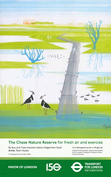 Ruth Hydes / The Chase Nature Reserve / Image 1