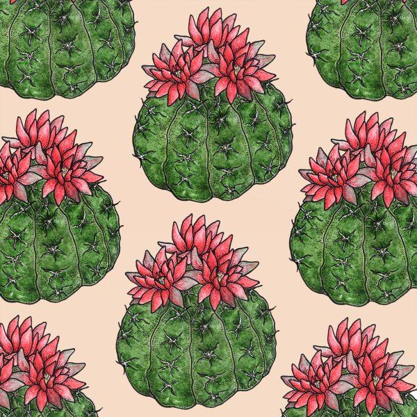 Cacti Flora