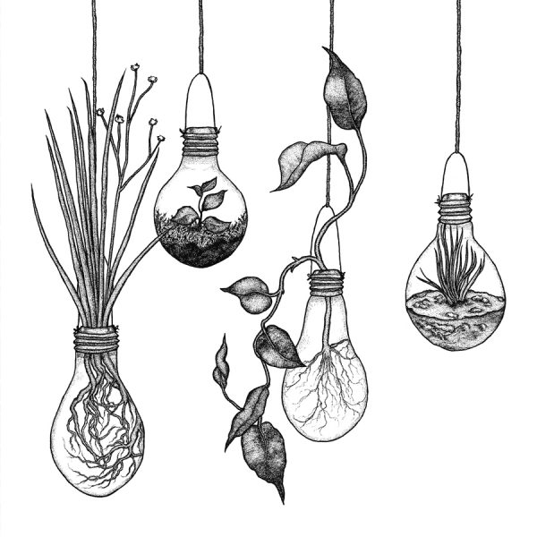 Lightbulbs - Growing Ideas