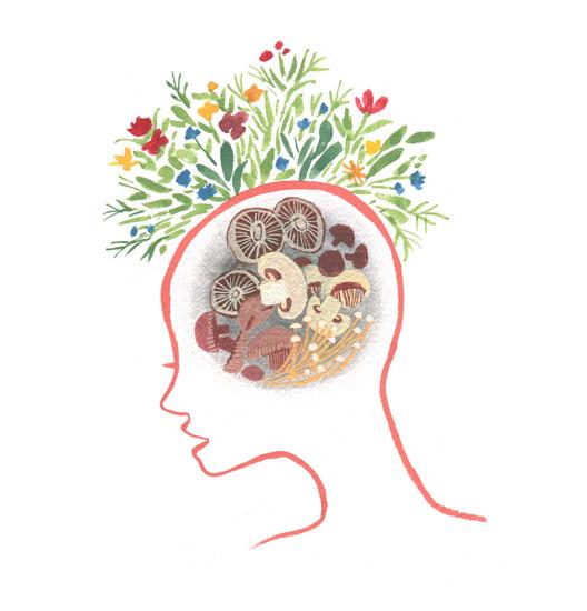 Mushroom brain power