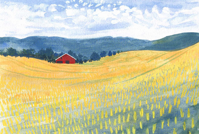 Red house cornfield