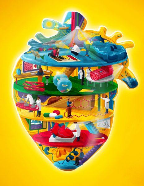 Regenerative Medicine / Scientific American