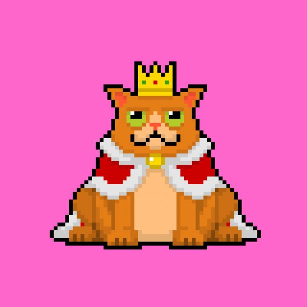 Giphy Cat King
