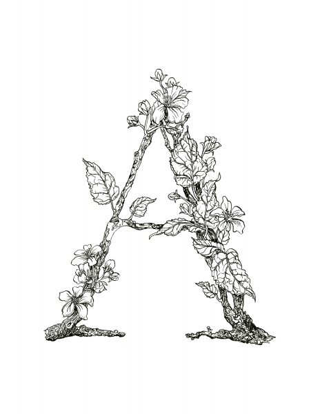 Plants and Tree Typography