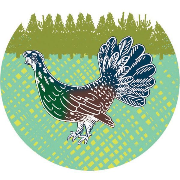 AAA Corner Capercaillie rgb