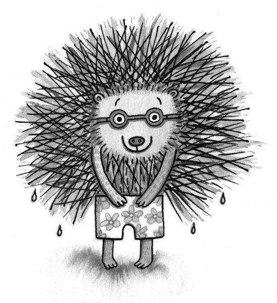 A Hedgehog's Swimming Report