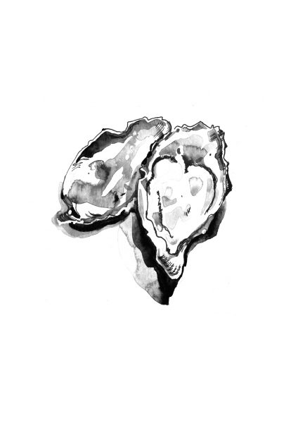 Oysters for design company &Smith
