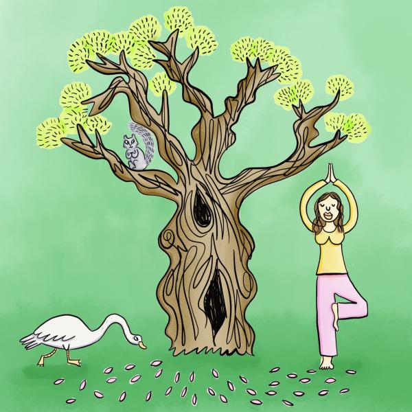 Tree Pose