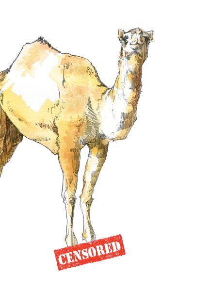 CamelToeforWeb