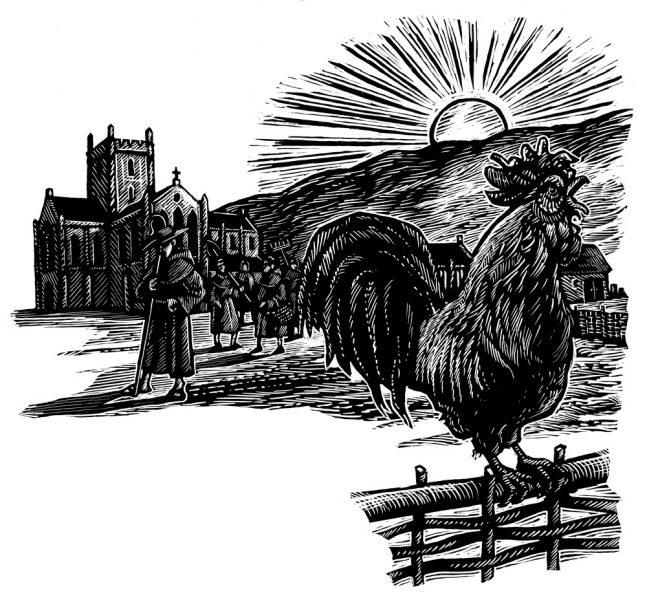 Cockeral Crow