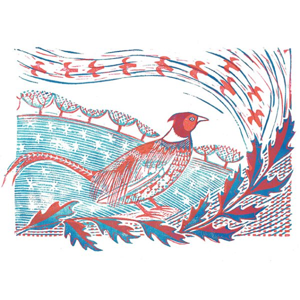 Winter Pheasant (Christmas cards)