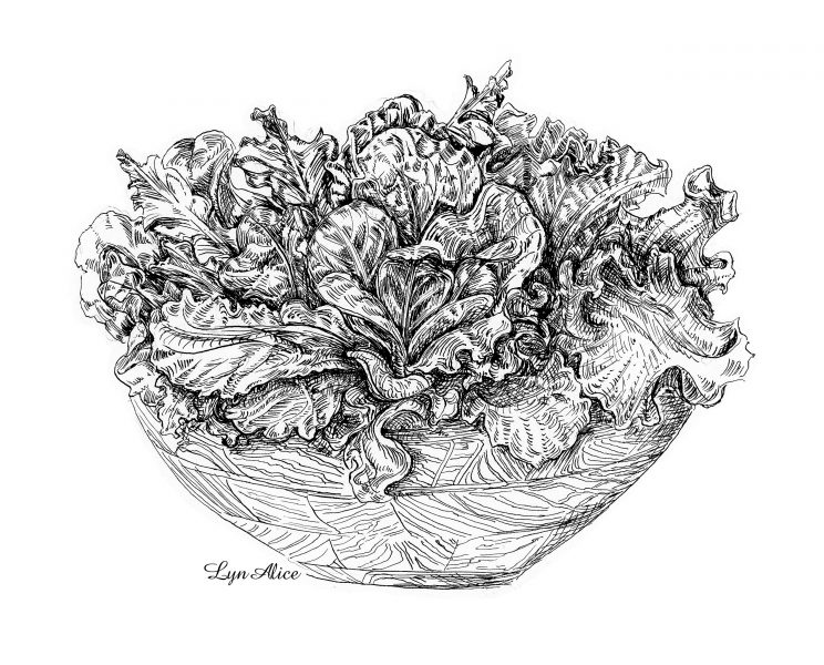 Bowl of Greens ~ Quill & Ink