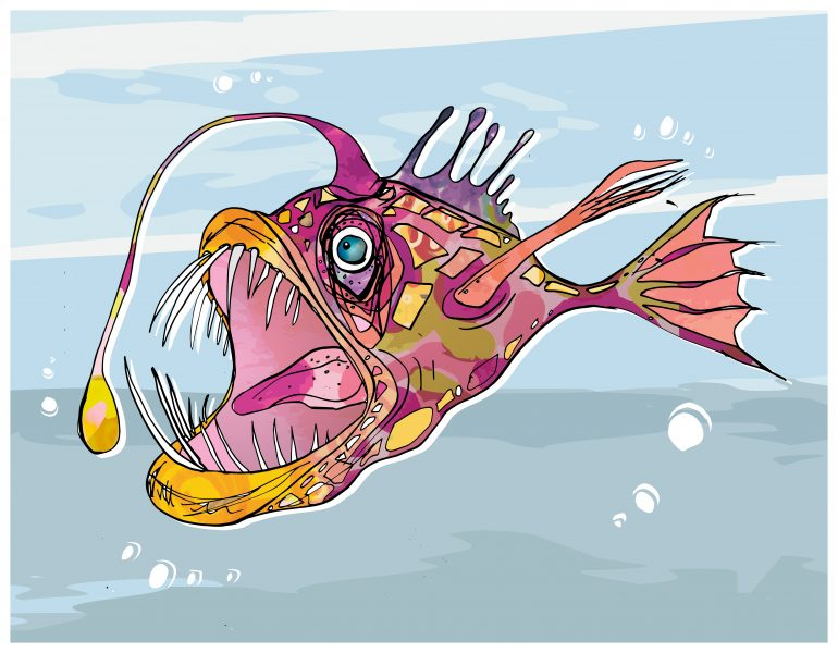 Angie Anglerfish