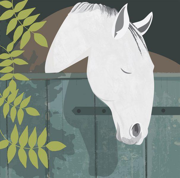 Dozing horse