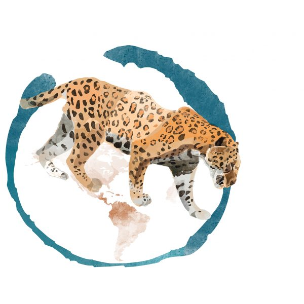giaguaro_2018