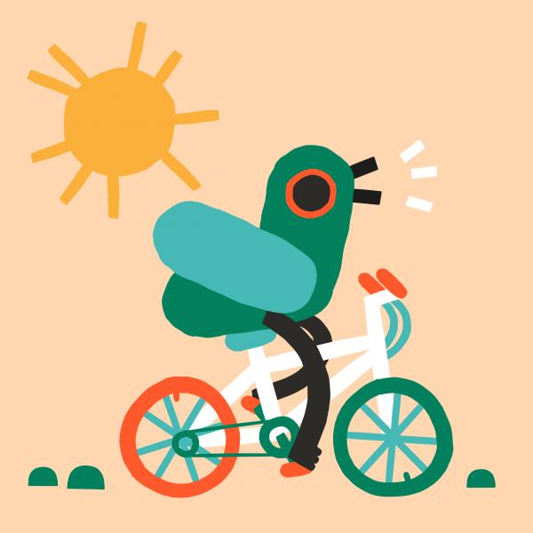 Cycling pigeon - Jenni Saarenkyla