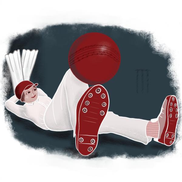 Joys of cricket