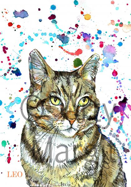 Leo the cat - Pet portrait