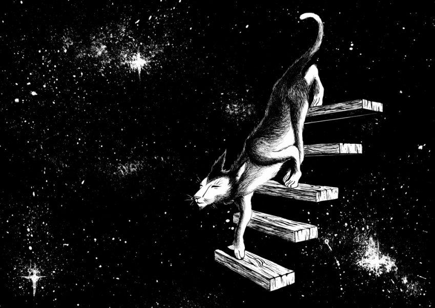 superstitionV_cat