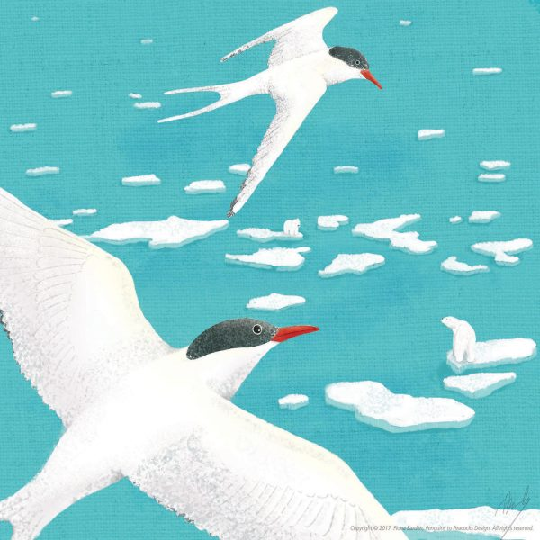 The Weather Terns