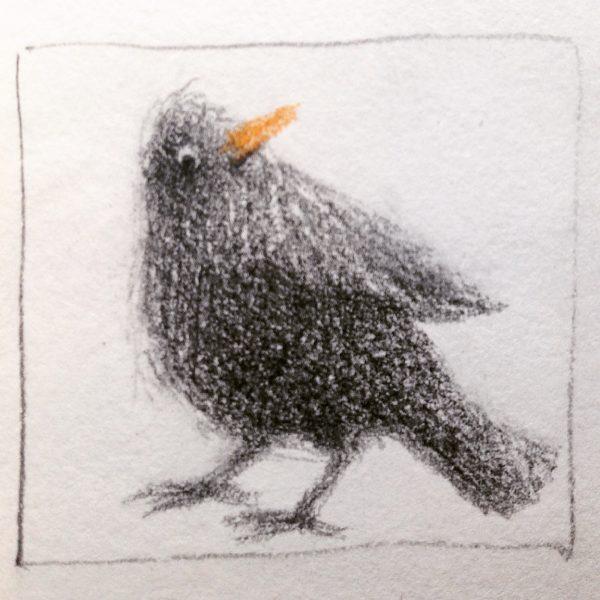 The Blackbird