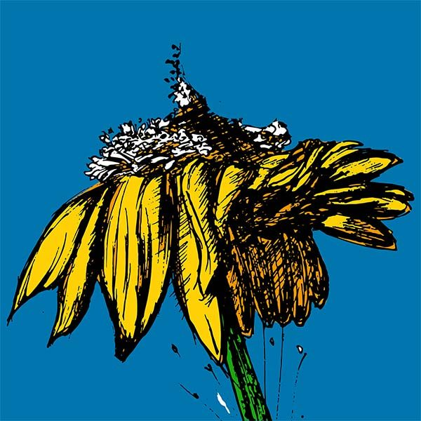 Pop art yellow flower on a blue background