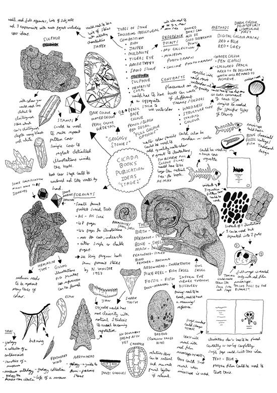 Cicada Illustrations Endpaper AOI_550