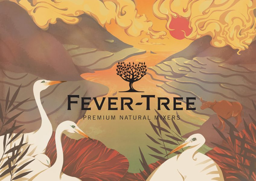 fever tree package