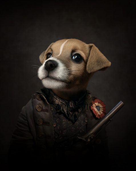 Self Directed - Jack Russel Portrait (2020)